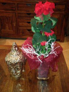 Feng Shui se týká i květin.