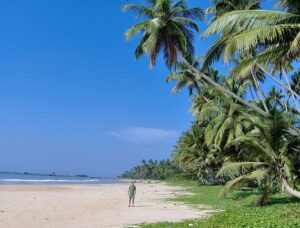 srilanca